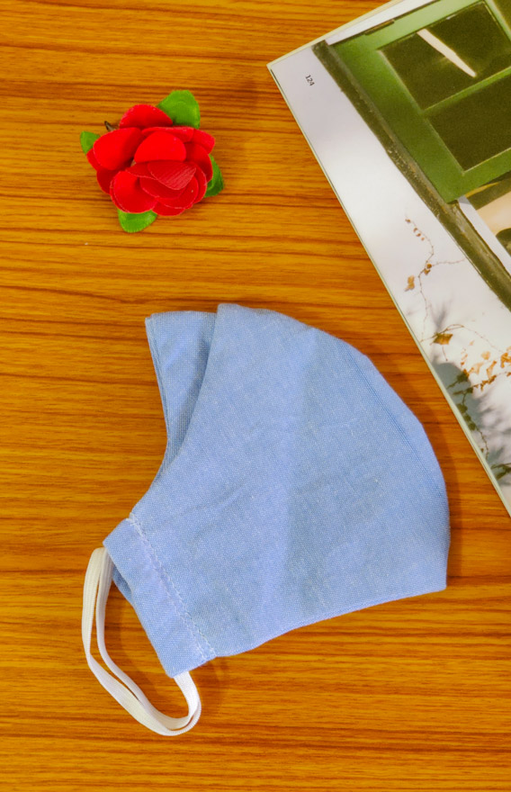 Blue 4 Ply Reusable Double Mask